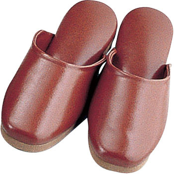 Antibacterial Slippers
