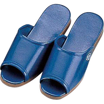 Antibacterial DX Slippers