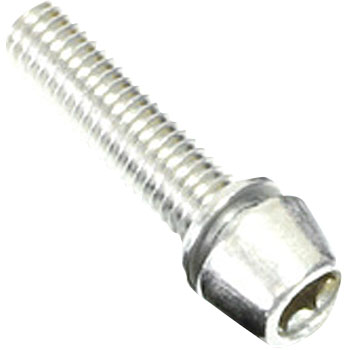 Stainless Steel Color Bolt