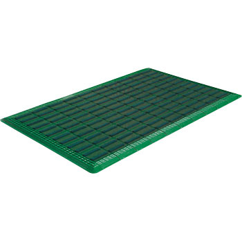 Brush Entrance Mat