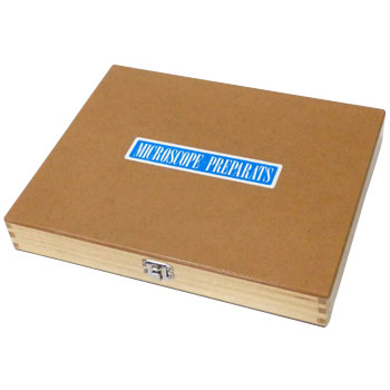Prepared Slide Wooden Box