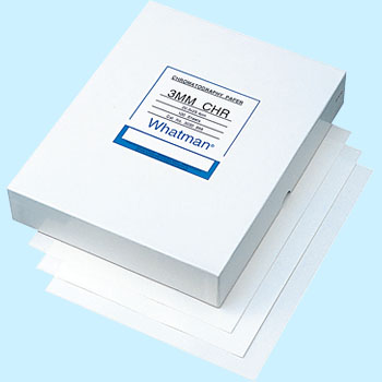 Square filter for blotting (3 MM Chr)