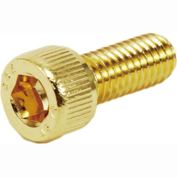 Stainless Steel Cap Bolt