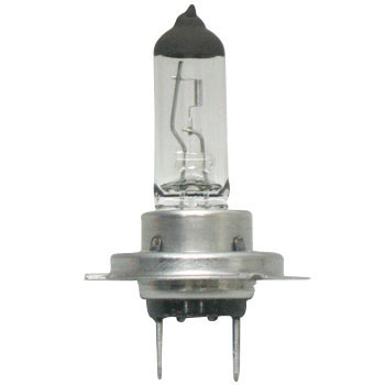 Halogen Lamp H7 12V