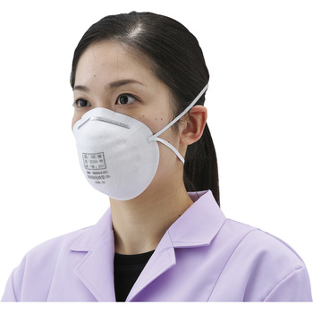 Dust Mask No.8000J