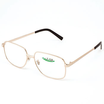 Spectacles for Presbyopia