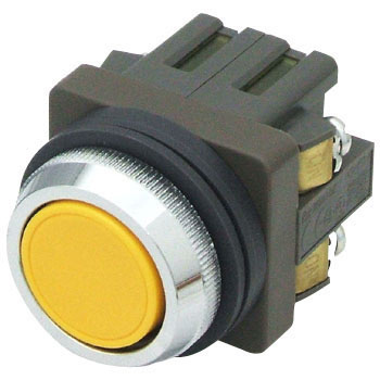 phi 30 Abn Series Push Button Switch, Flat
