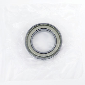 Single-Row Deep Groove Ball Bearing No. 6900 Stand ZZ