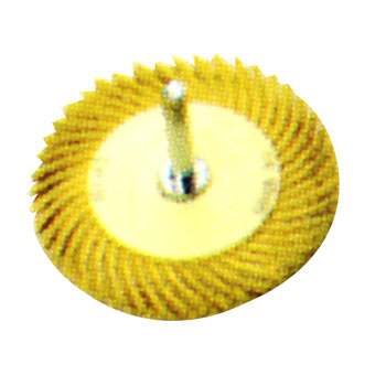 Radial bristle Marguerite disk 76.2 mm (3 inches) of outside-diameter axis of 6 mm