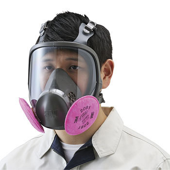 Dust Mask No.6000F 2091-RL3