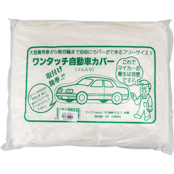 Disposal Car Cover