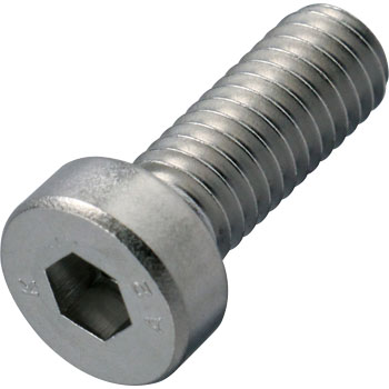 Bolt With A Shot Head Hexal Socket, Stainless Steel) All Screws