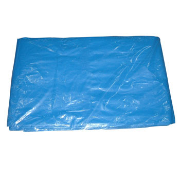 No. 2000 Blue Tarp