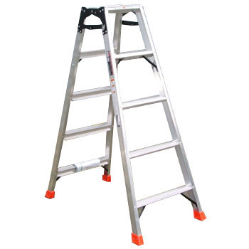 Professional Stepladder