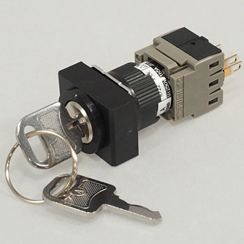 phi16 Selector Switch Ah164 Series Rectangular Key Type, 18X24