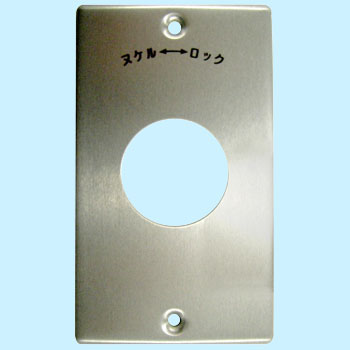 Outlet Plate, Hook Type, 15A and 20A