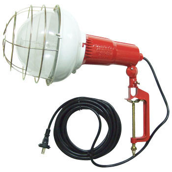 Mercury Floodlight Lamp