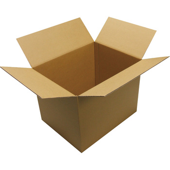 Carton Box, 10-Sheet