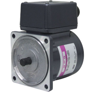 Induction Motor 25W