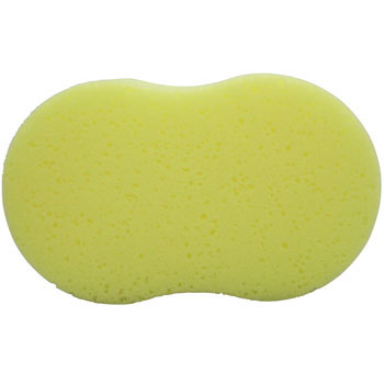 Sponge for Car Shampoo