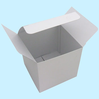 Craft Box, White