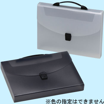 Carrying File A4 Size