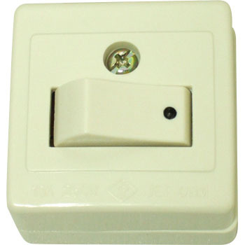 Angle Type Exposed Switch