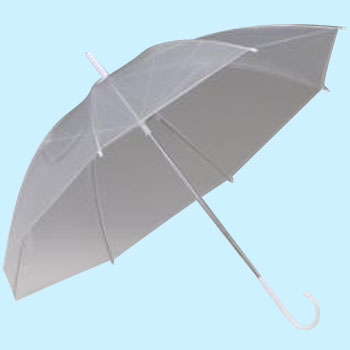 Poe Made Clear Umbrella