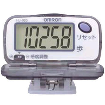 Health Pedometer Counter