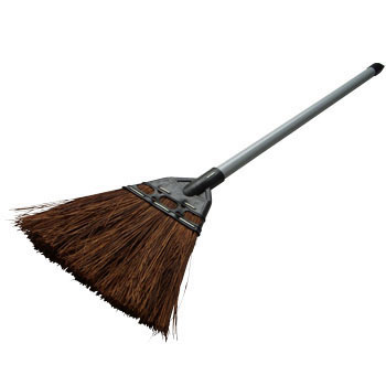 Fern Broom Short Handle