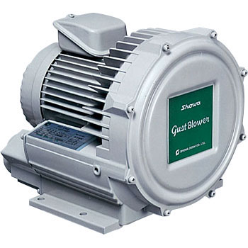 High Pressure Type Series Gast Blower