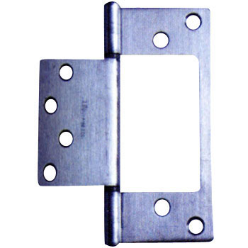 Stainless Steel Flash Hinge