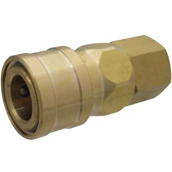 Brass Socket Coupler, For Mounting Male Screws