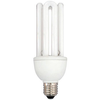 Inverter Type Replacement Fluorescent Light