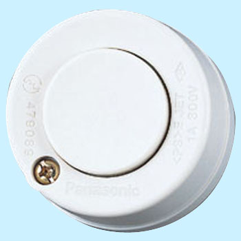 100 V Round Pushbutton