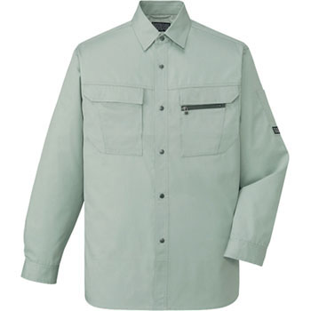 46204 Long sleeve shirt (for the year)