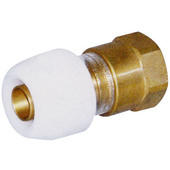 Push Master Female Adapter