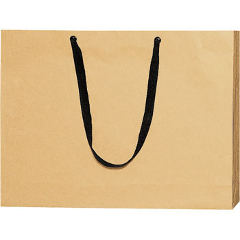 Paper Bag Shoulder Type