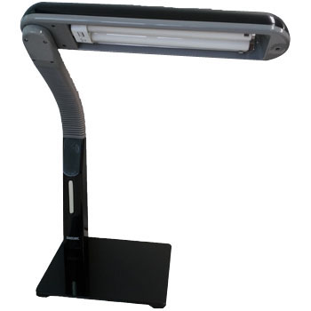 Inverter task light