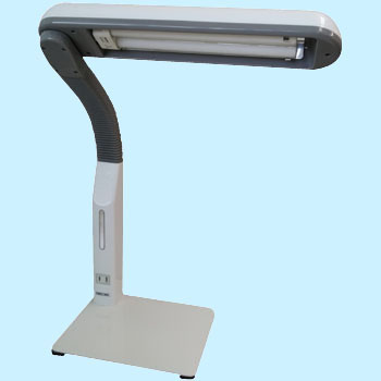 Inverter task light with hand electrical outlets