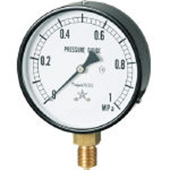 Steam Pressure Gauge