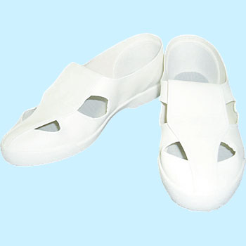 Cleanroom Shoes No.10