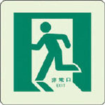 emergency exit aisle guidance sign floor application unit safety