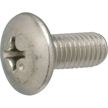 Truss Head Small Screw