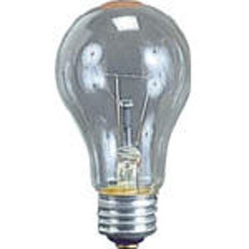 Earthquake-Proof Bulb