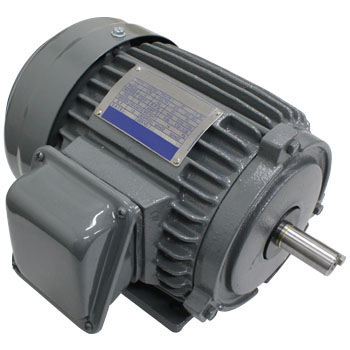 Standard 3 Phase Motor, Indoor Type