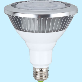 LED Work Light Replacement Bulb