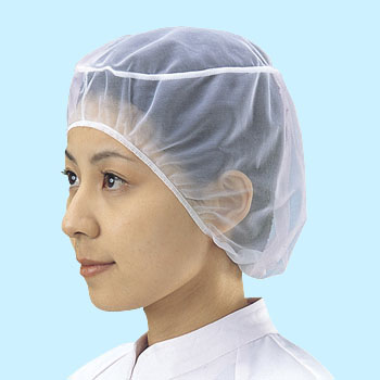 Clean Hair Net #50