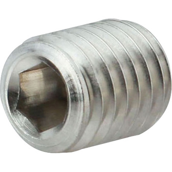 Hex Set Screw, Flat Point, SUS316L