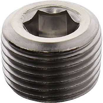 Hex Socket Taper Screw Thread, Stainless Steel